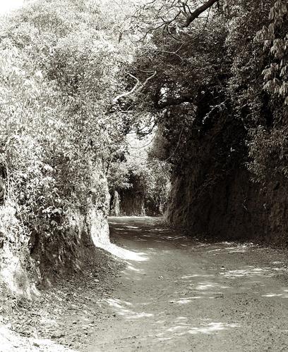 Road to Vishalgad